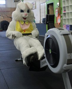 Easter-Bunny-Row