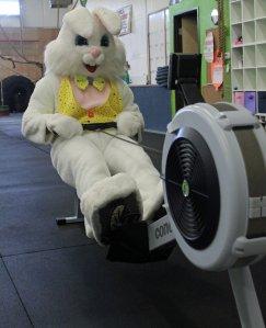Easter-Bunny-Row
